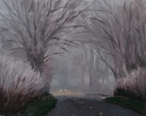 Headlights in the Fog